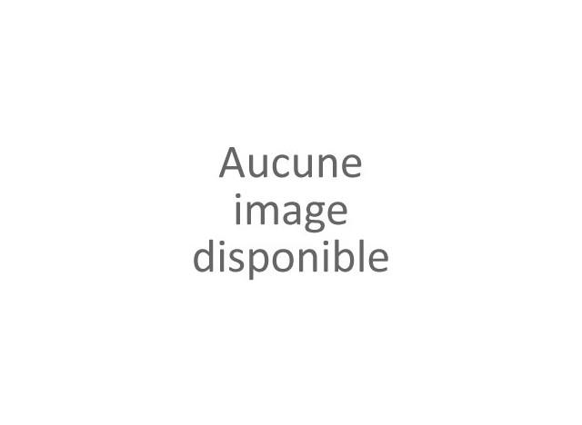 ROULEAU BROSSE  POUR ASPIRATEUR BALAI SANS FIL JV222 / RH22 / RHDC2